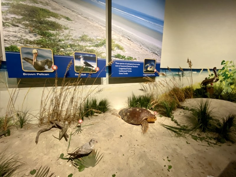 nature and technology center ksc