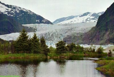 Our favorite part of Juneau, Alaska was Tongass National Forest.