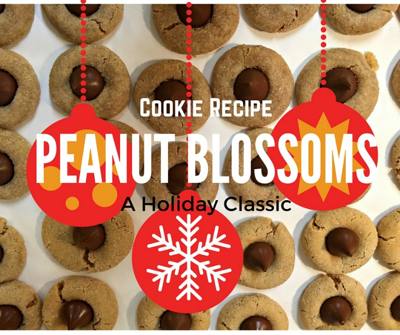 Here is our recipe for the most amazing cookie of all---peanut blossoms!