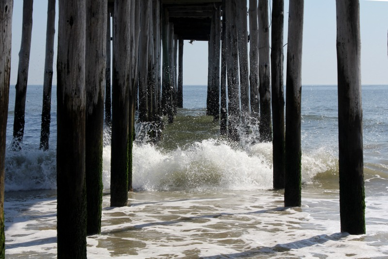 There are 5 towns to explore on South Carolina's Hammock Coast.