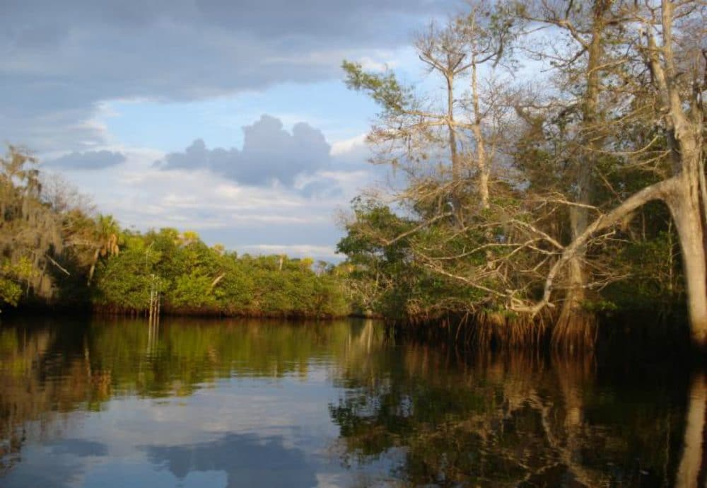 jonathan dickinson state park waterway