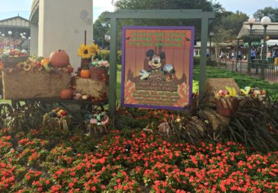 A popular fall thing to do at Walt Disney World is attend Mickey's Not So Scary Halloween Party.