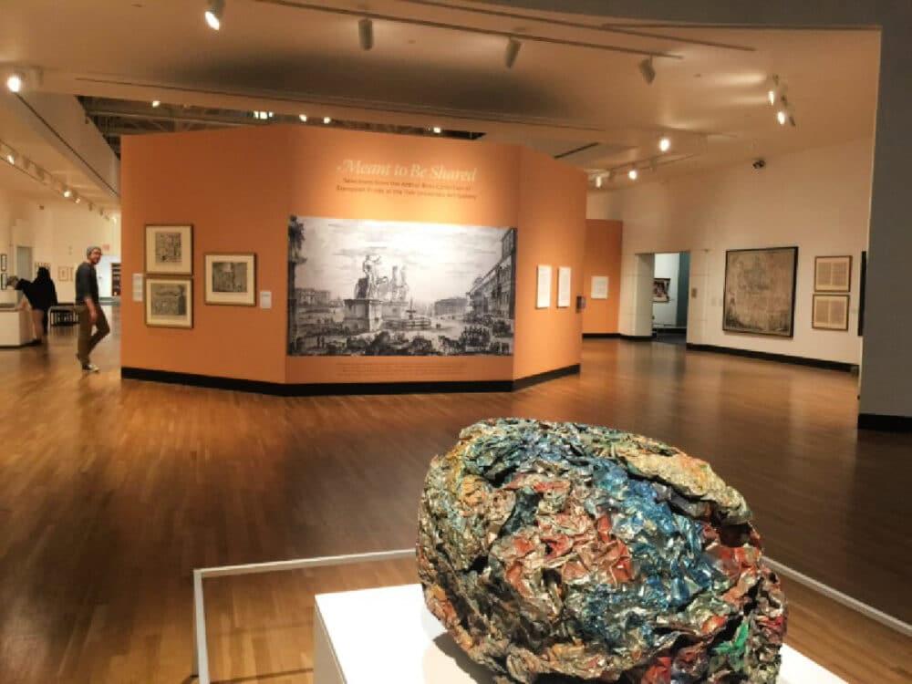 museum-attraction-in-gainesville-florida