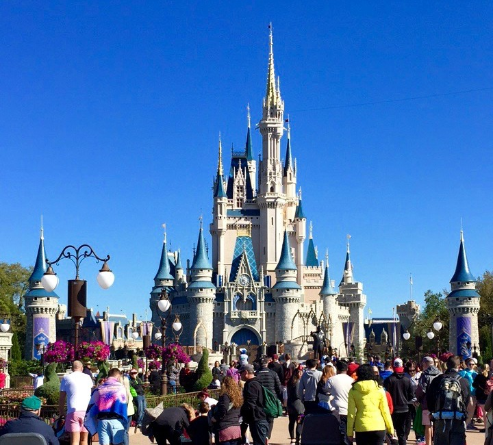 There are a lot of things to do at Walt Disney World!