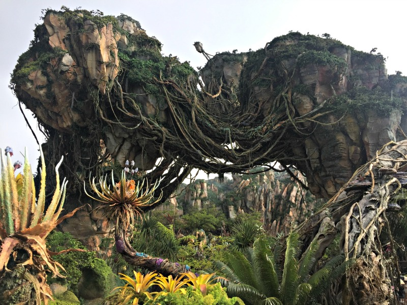 One of the newest things to do at Walt Disney World is explore Pandora at Animal Kingdom.
