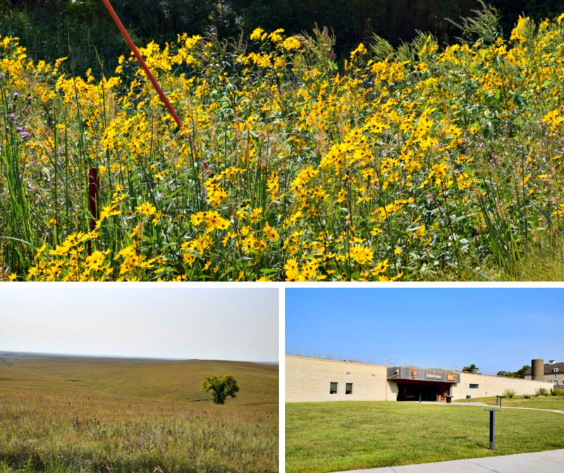 Exploring the Tallgrass Prairie National Preserve will be a highlight on your road trip through the Flint Hills of Kansas.