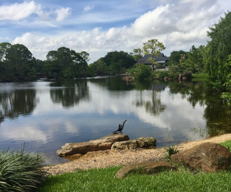 Tranquil setting at Morikami Museum and Japanese Gardens in Delray Beach.