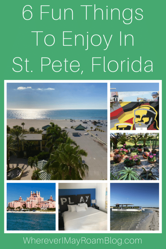 6-fun-things-to-enjoy-in-st-pete-florida-pin