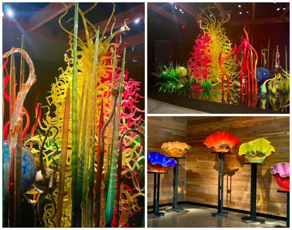 chihuly collection of curved and pointy glass pieces