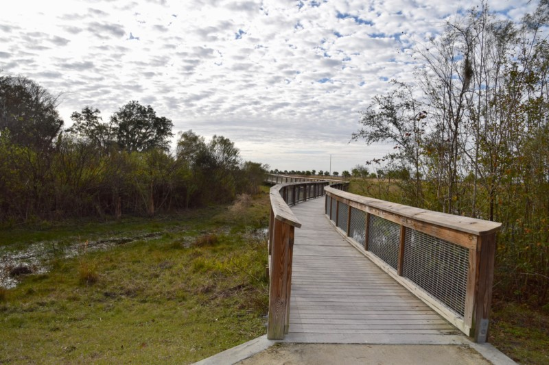 Our itinerary for Gainesville, Florida includes hiking through Paynes Prairie park.