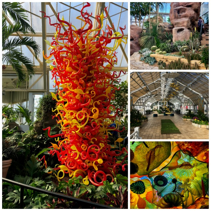 Exploring the Franklin Conservatory is one of the best things to do in Columbus, Ohio.