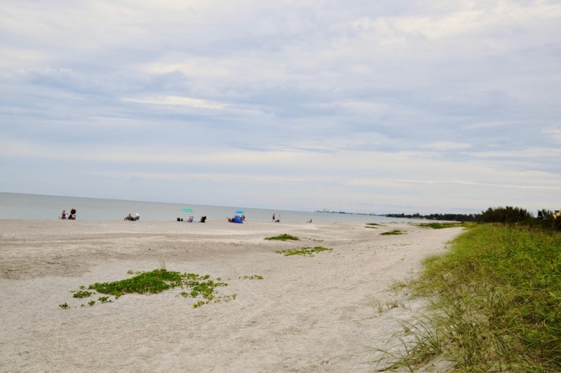 One of the things to love about Siesta Key is the amazing beaches, often voted best family beach in America.