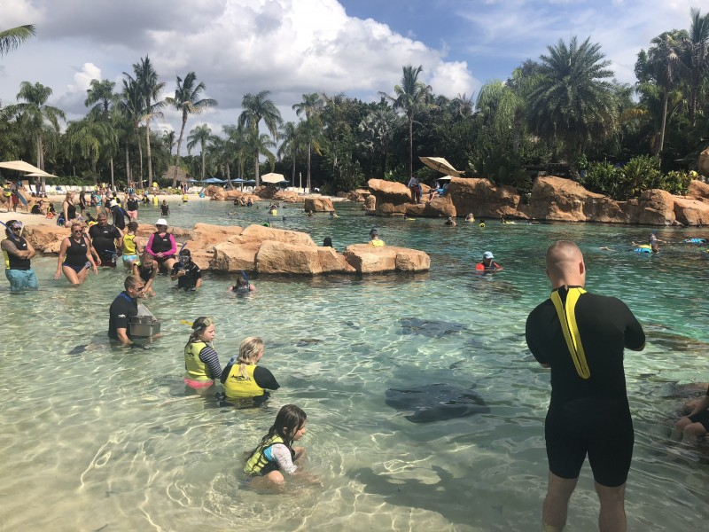 A tropical oasis awaits you in Orlando at the amazing Discovery Cove water park.
