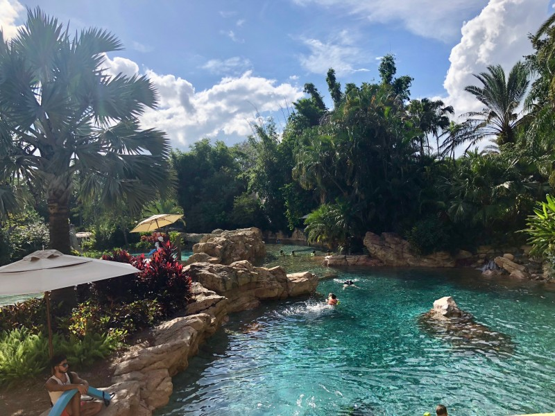 The allure of Discovery Cove in Orlando will astound you!