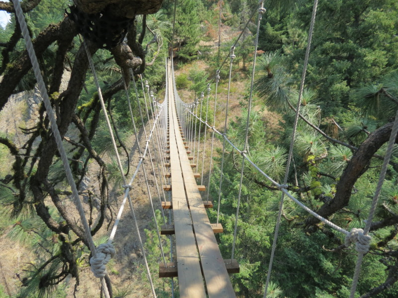 If you're up for a thrill, Timberline Adventures has an epic ziplining course in the tops of the trees on Coeur D'Alene mountain