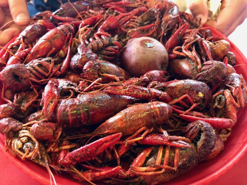 One of the extraordinary things in Lake Charles is to eat delicious cajun food at local restaurants such as Steamboat Bill's.