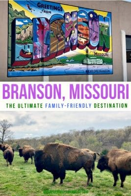 branson-missouri-pin