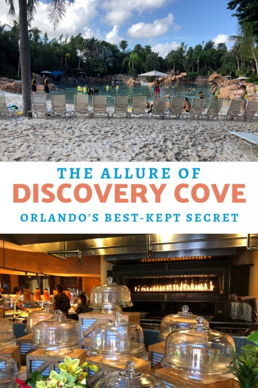 discovery-cove-orlando-best-kept-secret-pin