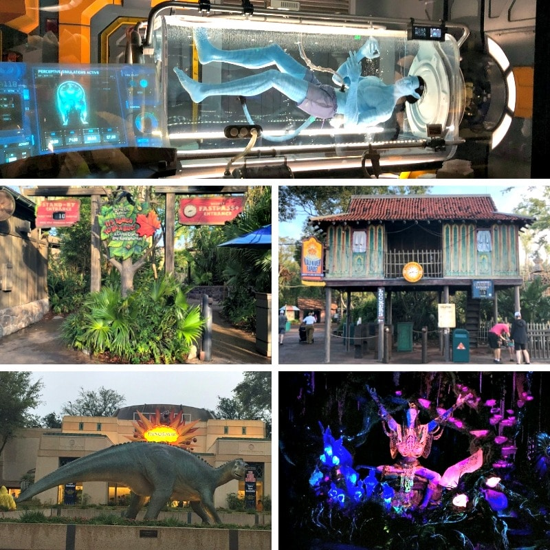 Here are some more rides at Disney's Animal Kingdom.