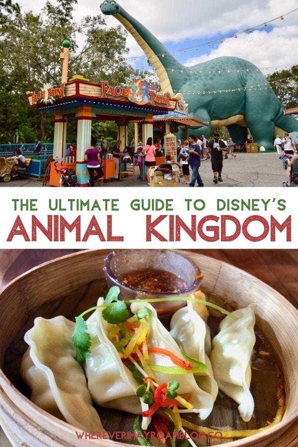guide-animal-kingdom-disney-world-pin