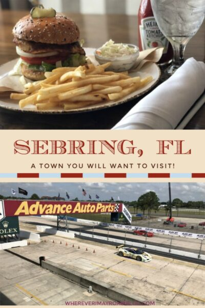 visiting sebring florida pin