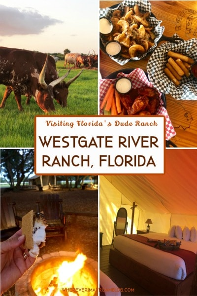 visiting Florida's westgate river ranch and rodeo