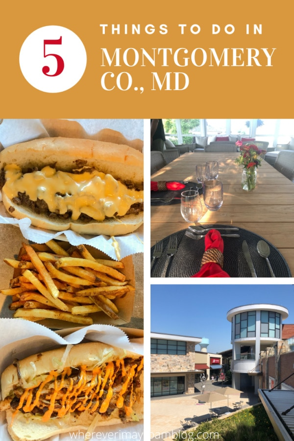 5 things to do in Montgomery County, Maryland