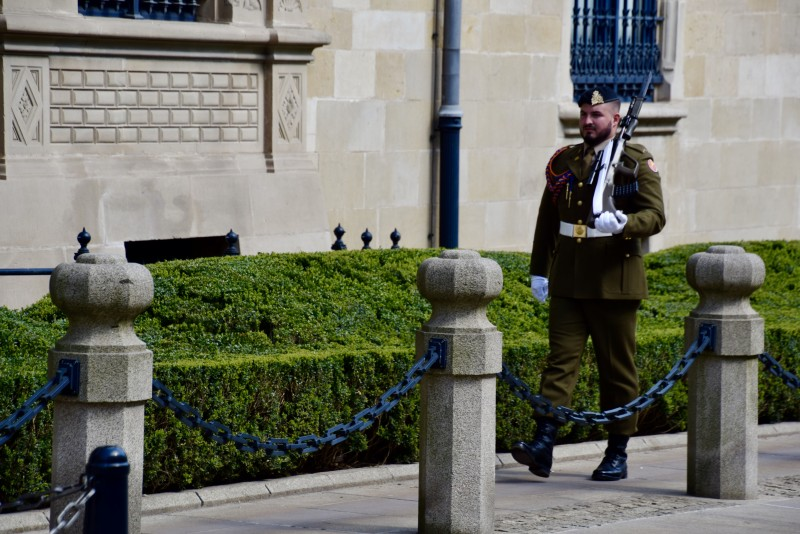 guard at grand ducal palace