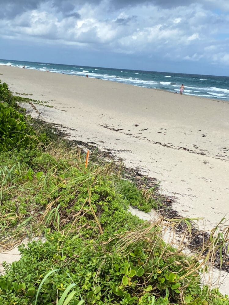palm-beach-florida