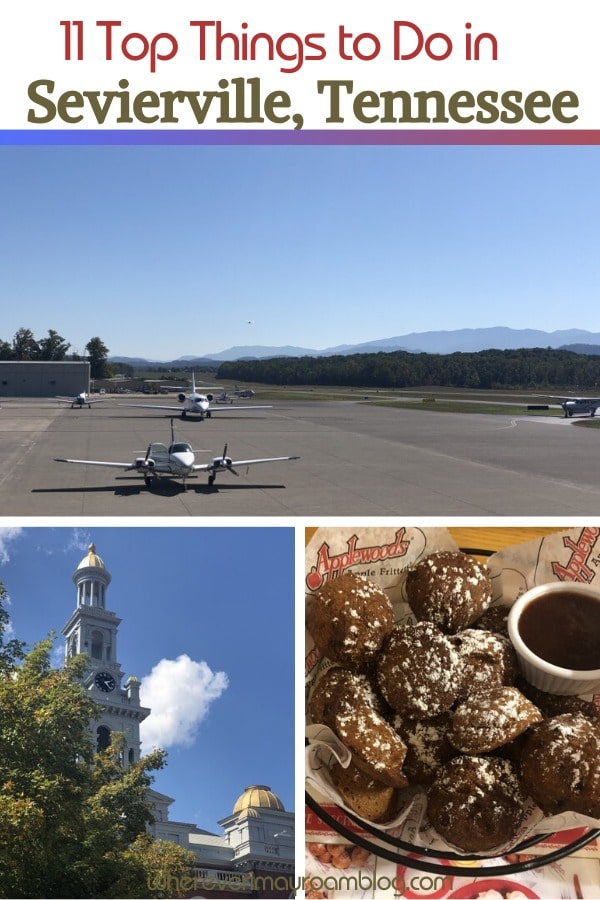 top things to do in sevierville pin