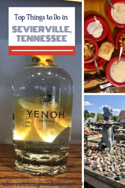 top things to do in sevierville tn pin