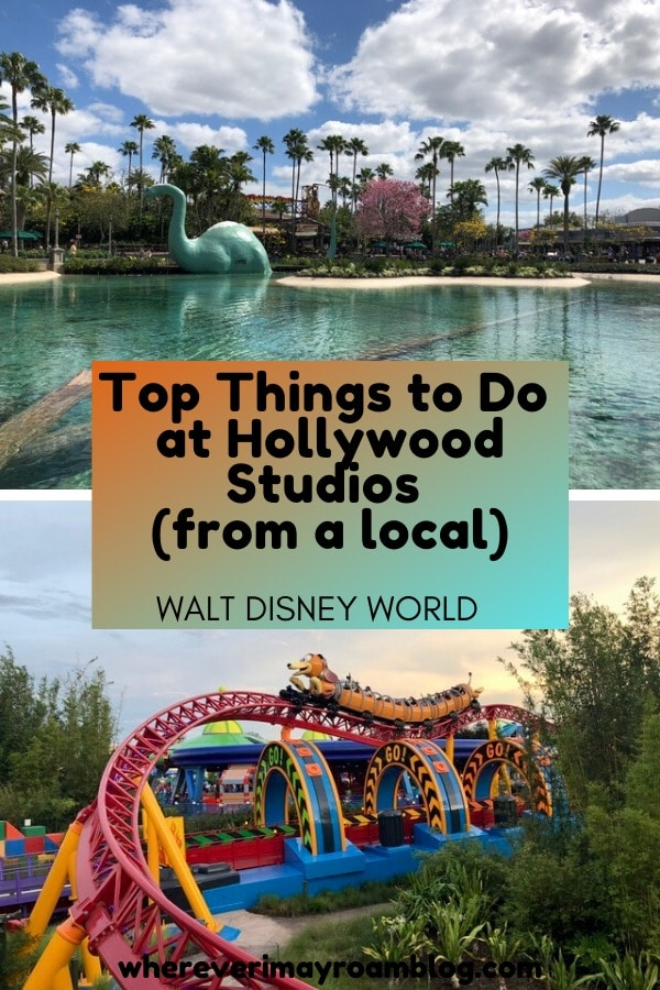 top things to do at Hollywood Studios pin