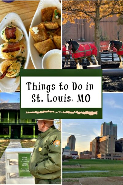 things to do in saint Louis Missouri
