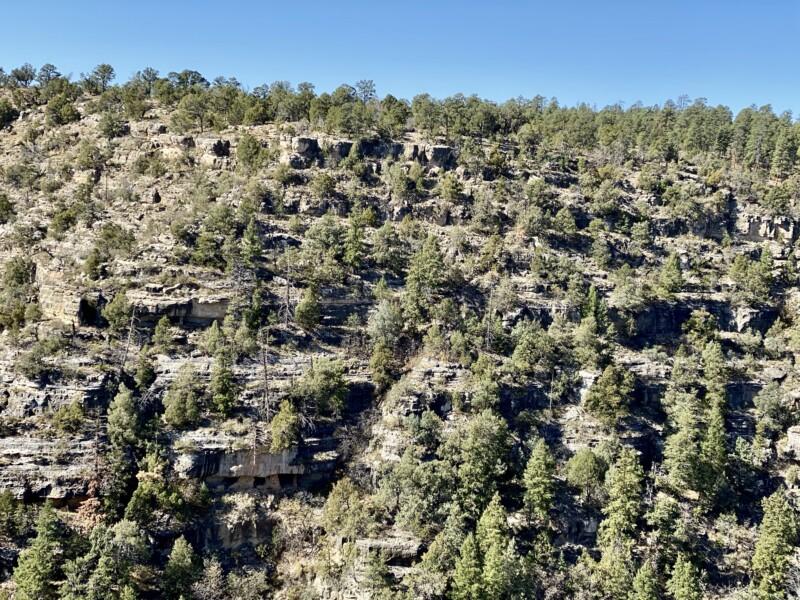 close up of walnut canyon national monument arizona