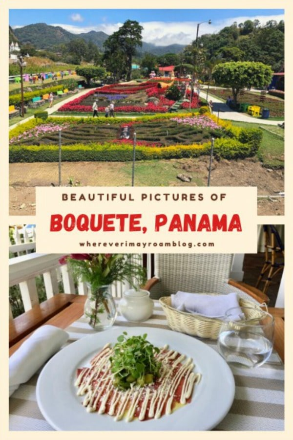 pictures-of-boquete-pin