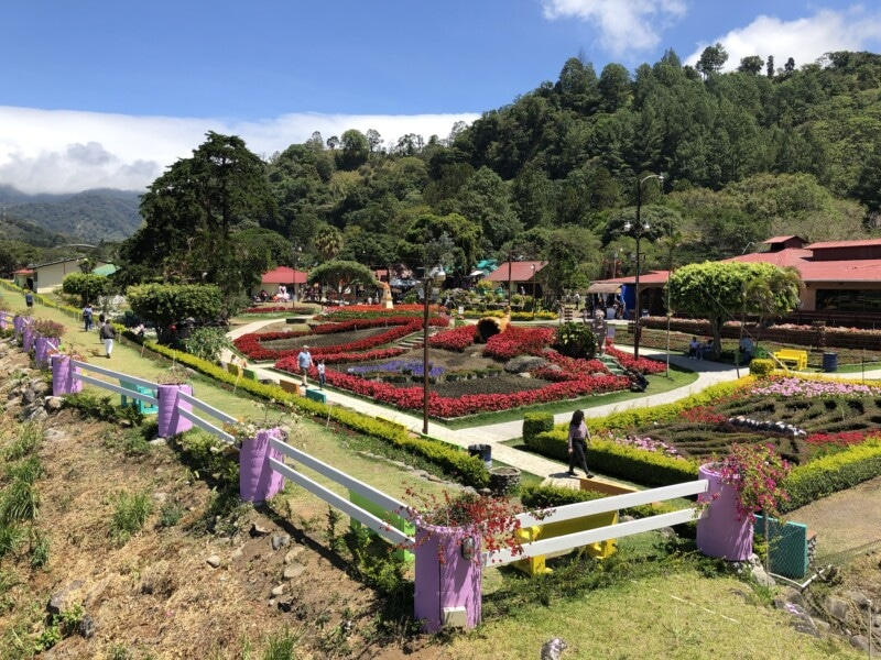 boquete fairgrounds with flowers