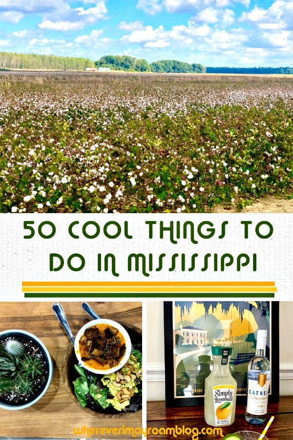 cool things to do in mississippi