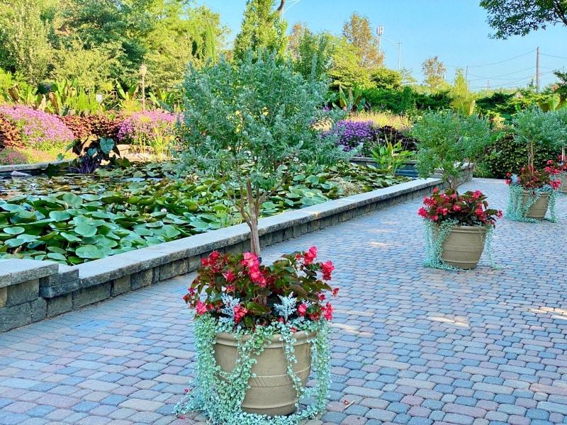 flower displays at sunken gardens