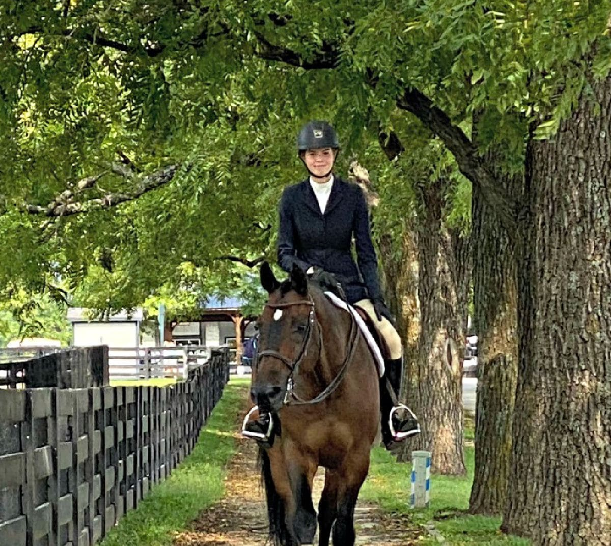 horse-jockey-walking-through-overgrown-trees