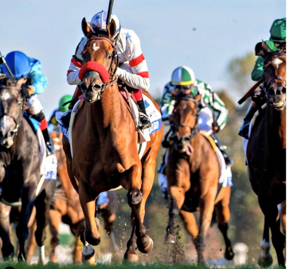 keeneland race horses