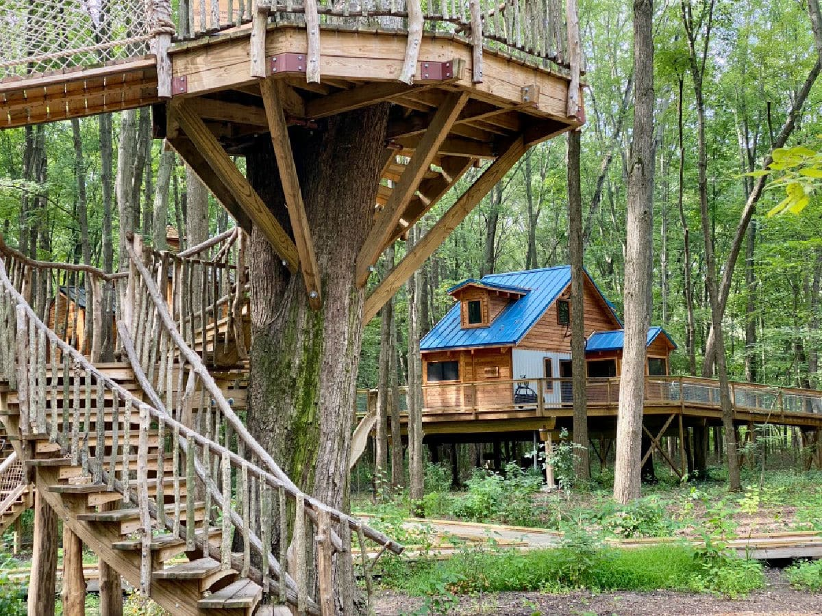 treehouse village toledo