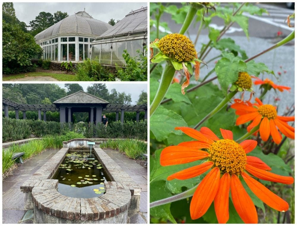 reynolda gardens fountain and greenhouse