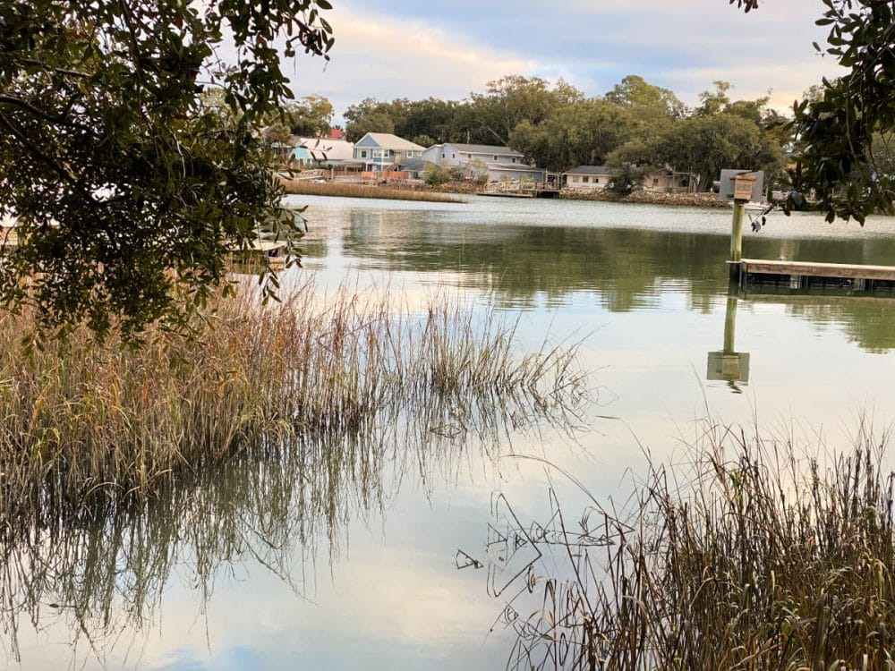 view of marsh swamp Tybee Island