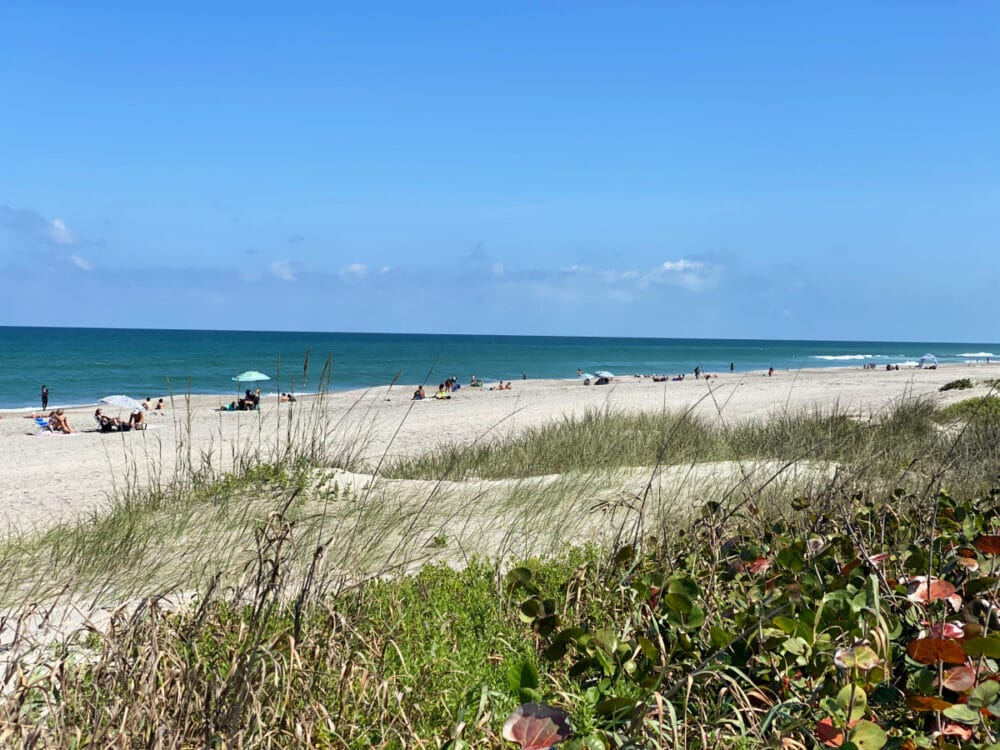 melbourne-beach-and-seagrass