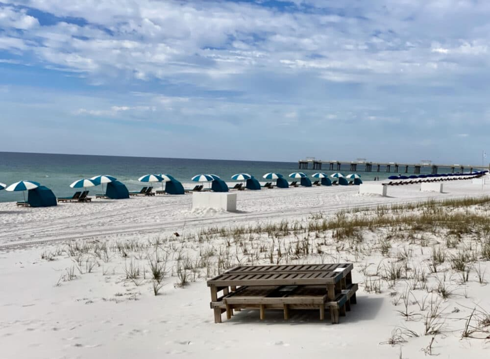 beach-umbrellas-and-chairs