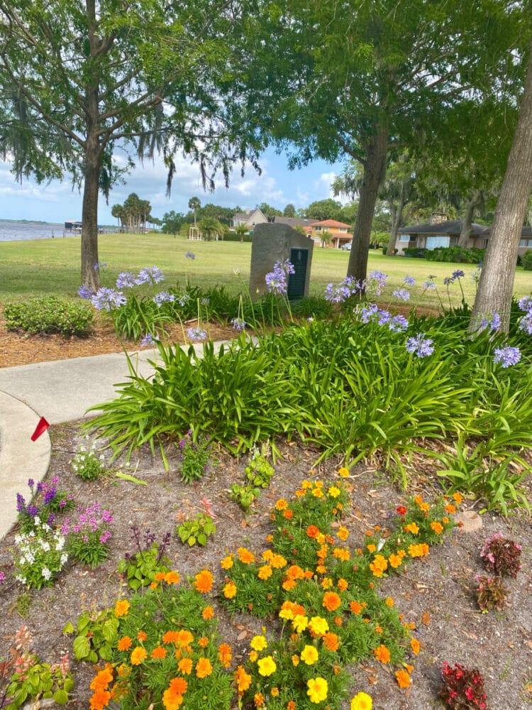fort-mellon-park-flowers