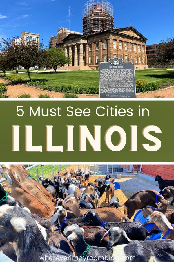 5-cities-you-must-visit-in-illinois