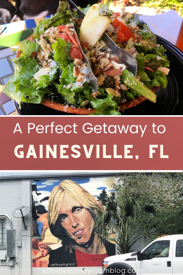 best-things-to-do-in-gainesville-fl