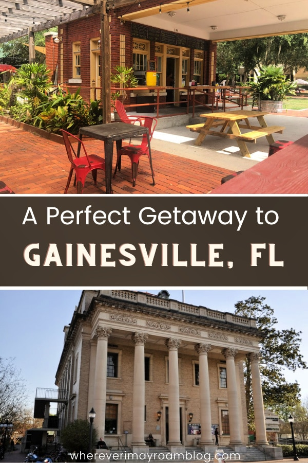 best-things-to-do-in-gainesville-florida
