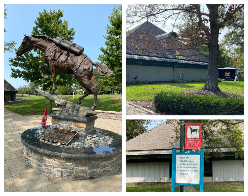 statues-and-food-truck-at-horse-park